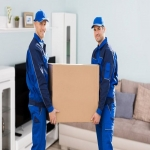 Legal Document Courier in Ardersier 5